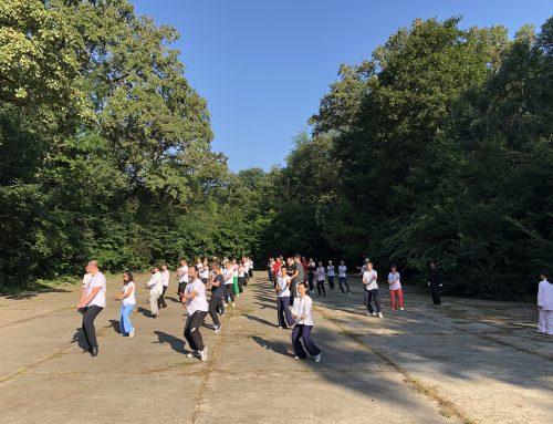 Stagiu Taiji – iulie 2018 Bucuresti